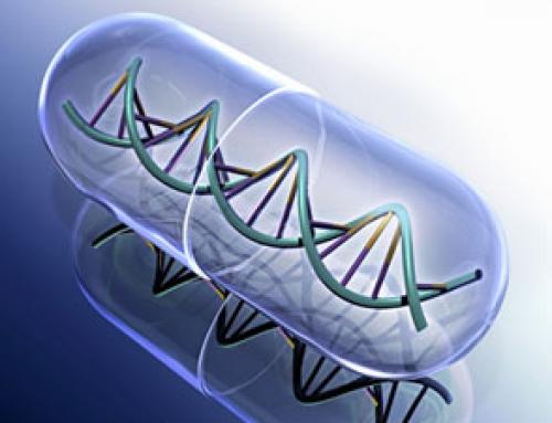 El Senado pide regular el intercambio entre biológicos y biosimilares