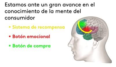 ilust neuro