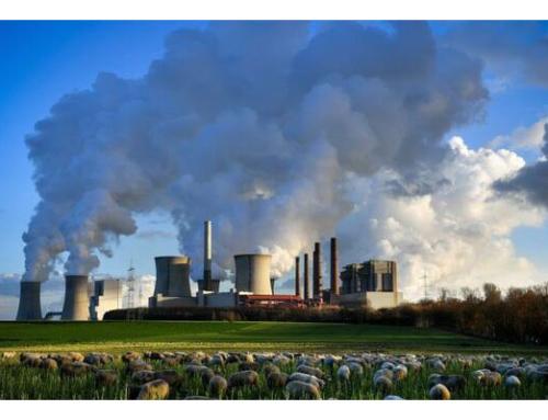 La OMS alerta de los escasos fondos que se destinan para proteger la salud del cambio climático